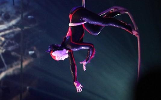 cirque-button-B-640_498x280.jpg